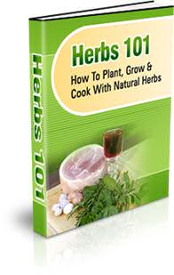 natural herbs - medicinal herbs - cooking herbs